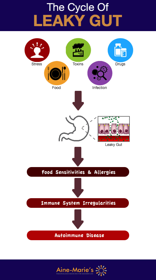 Leaky Gut Cycle